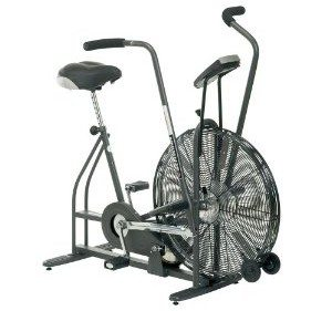 Schwinn Airdyne AD4 Upright Exercise Bike Deal