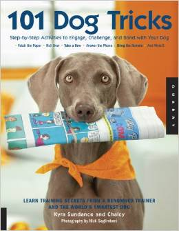 101 Dog Tricks Step by Step Activities to Engage, Challenge, and Bond with Your Dog Deal