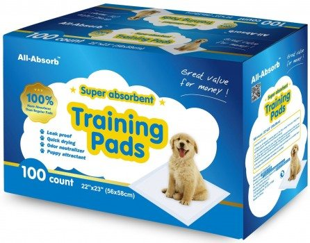 All-Absorb 100 Count Training Pads, 22-Inch by 23-Inch Deal