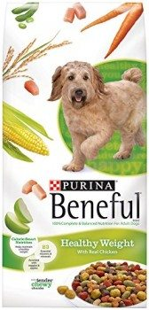 Beneful Dry Dog Food Deal