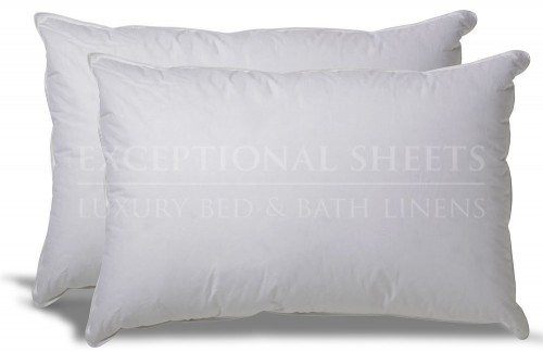 Set of 2 Down Alternative Hypoallergenic Pillow Deal
