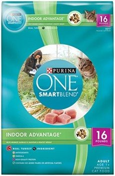 Purina ONE SmartBlend Dry Cat Food Deal