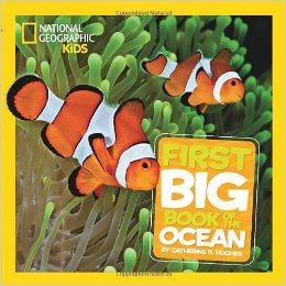 National Geographic Little Kids First Big Book of the Ocean Deal