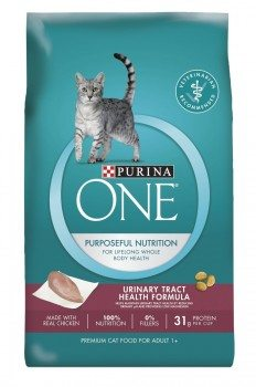 Purina ONE Dry Cat Food Deal